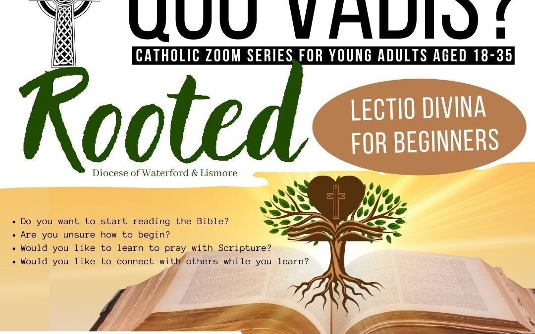 Quo Vadis – Rooted