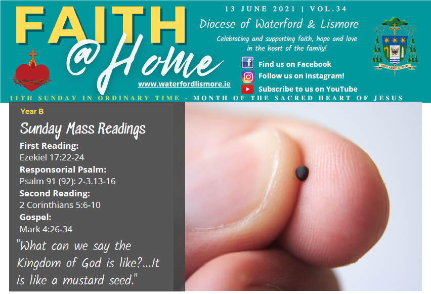 Faith at Home Newsletter – 11th Sunday in Ordinary Time